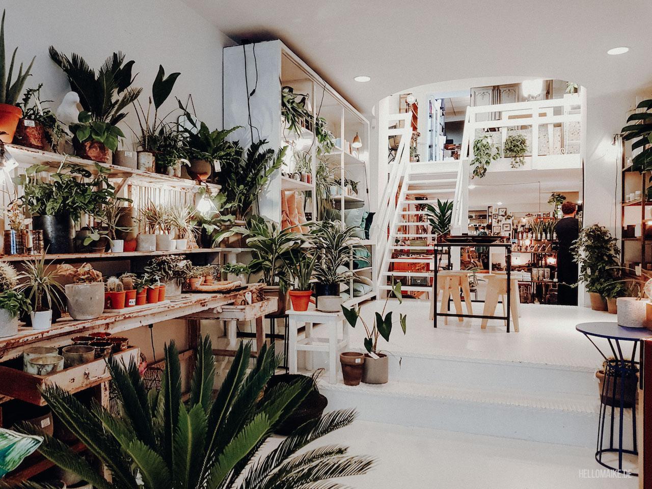 Concept Store Antwerpen
